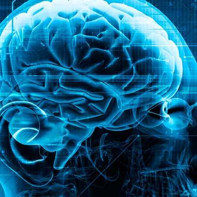 ΔΠΜΣ Νευροεπιστήμες και Νευροεκφυλιστικά Νοσήματα