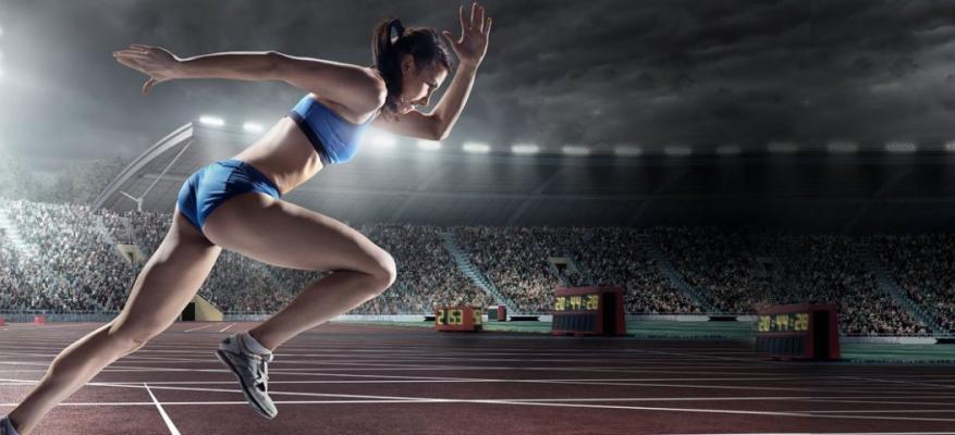 Τομέας Αθλημάτων